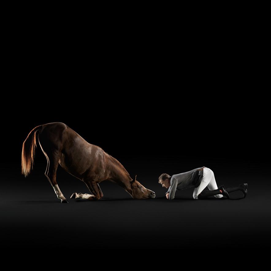 fotografia-commerciale-animali